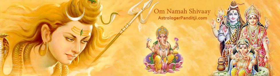 www.astrologerpanditji.com